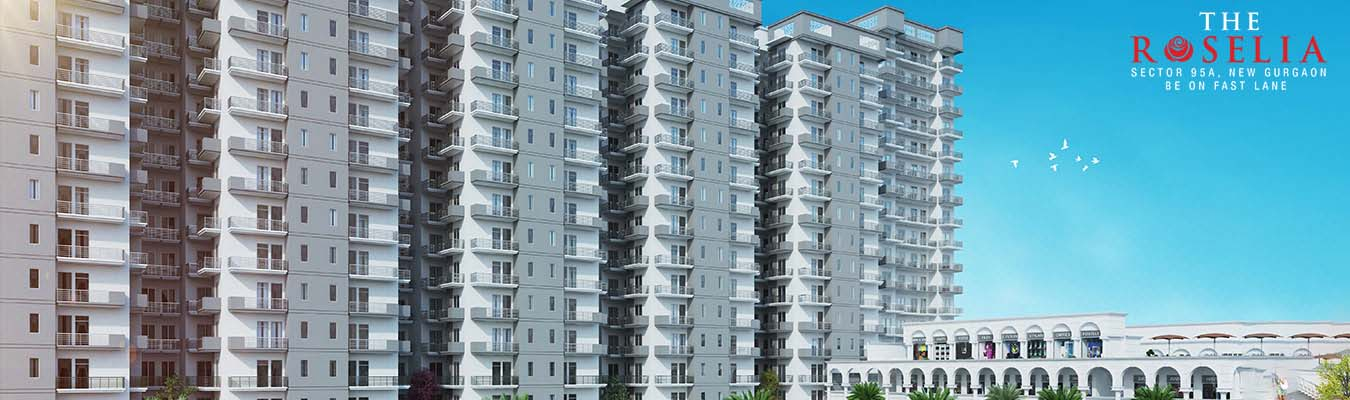 Signature Global Roselia Sector 95 Gurgaon