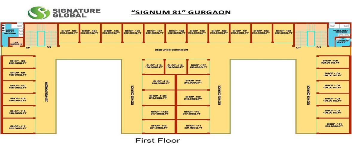 First Floor Signum 81